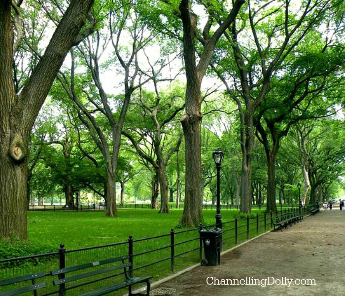 New York City Views; Travel To New York City   Heather Garcia