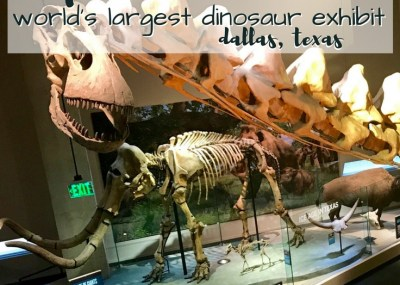 Perot Museum of Nature and Science; Dallas, Texas Dinosaur Museum. TrishSutton.com