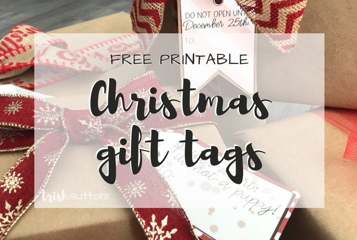 Save time and money while adding a little fun to gift wrapping with my Free Printable Christmas Gift Tags. Simply print, cut out, hole punch & attach.