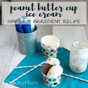 Peanut Butter Cup Ice Cream Recipe | Ready in Two Hours; TrishSutton.com