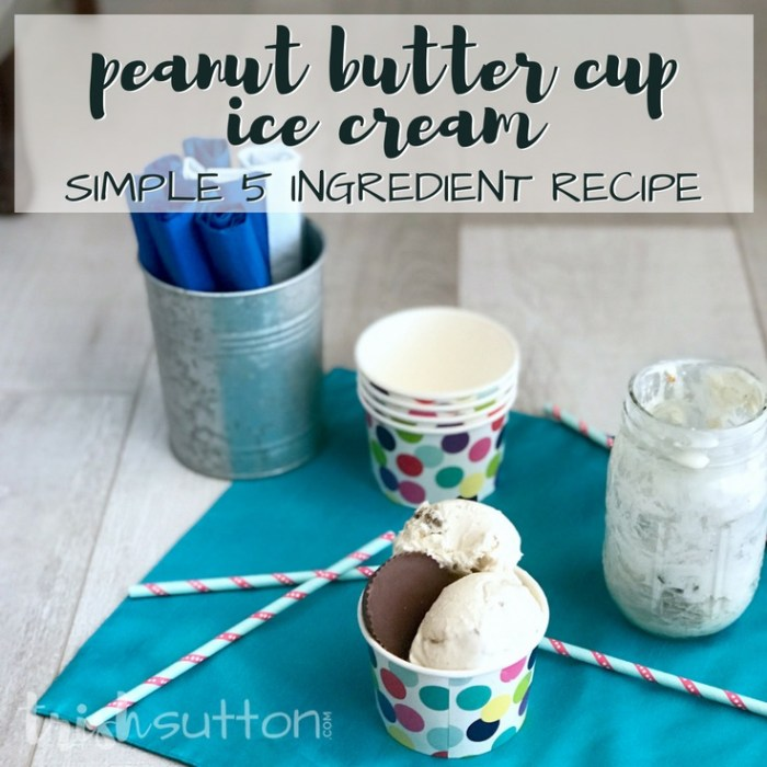 Peanut Butter Cup Ice Cream Recipe | Ready in Two Hours; TrishSutton.com