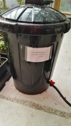 Nutrient solution in bin for hydroponics
