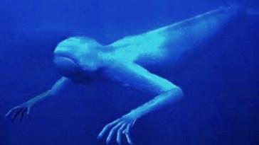 10 Mostri Sottomarini Misteriosi