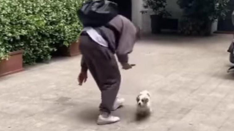 Ignazio Moser torna a casa dopo mesi: la reazione del suo cane
