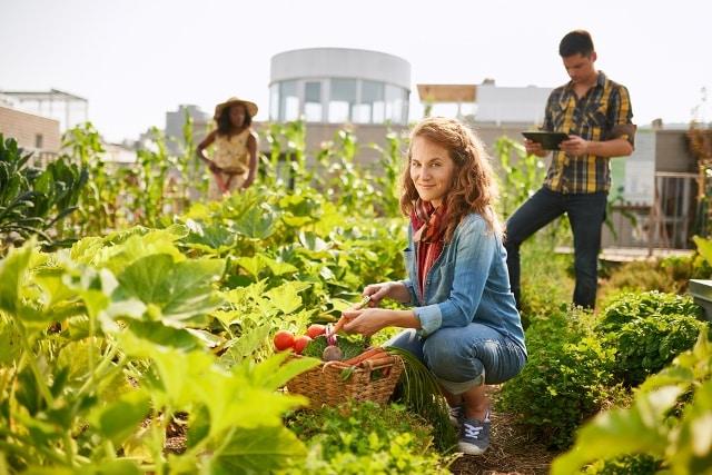 chế độ ăn thân thiện với môi trường
