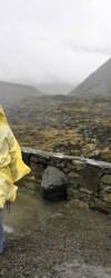 Vi hạt nhựa có ở khắp nơi, phát hiện được trong cả nước mưa – Trí Thức VN