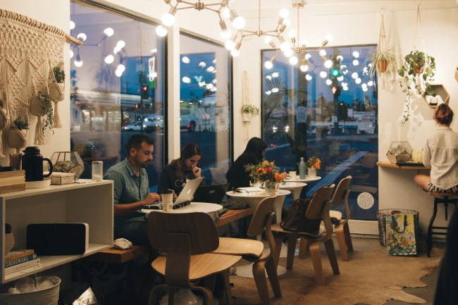 Communal Coffee in North Park is a great place for daylight studying. (Curtis Yee / The Triton)