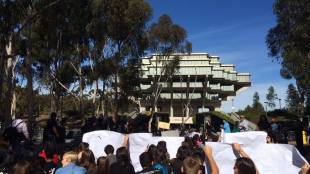 2014 tuition hike protests. (Photo Courtesy of Max Cotterill)