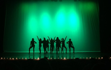 The dancers strike a pose before they begin their dance routine.