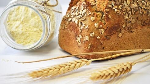 Tritordeum | El nuevo cereal saludable
