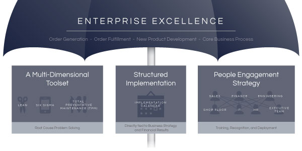 enterprise-excellence-umbrella-medium