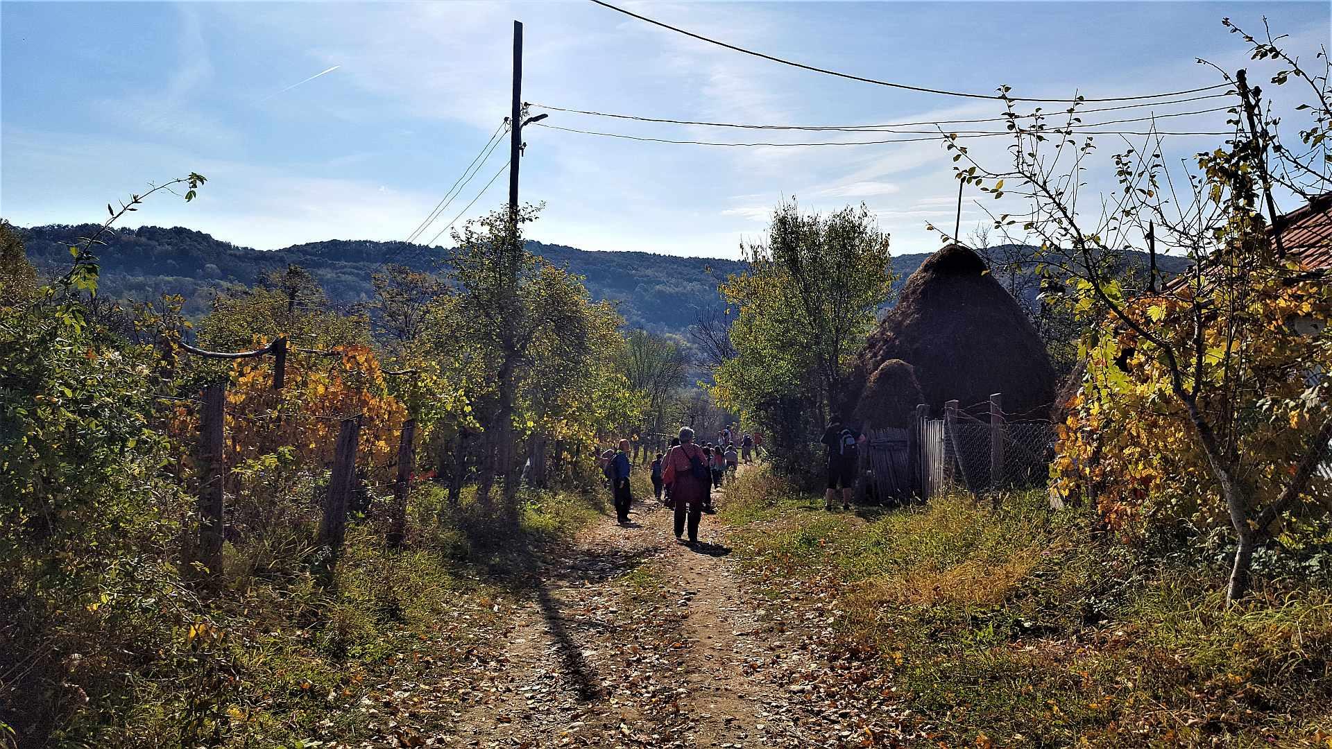 In drum spre Tunelul Gibei prin satul Piatra judetul Valcea
