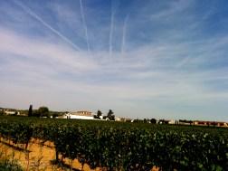 Catalonia-Penedes-Vineyard-Jet-Stream