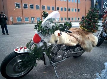 Basel-Christmas-Bike-Fur