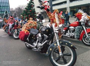 Basel-Christmas-Bike-Tree