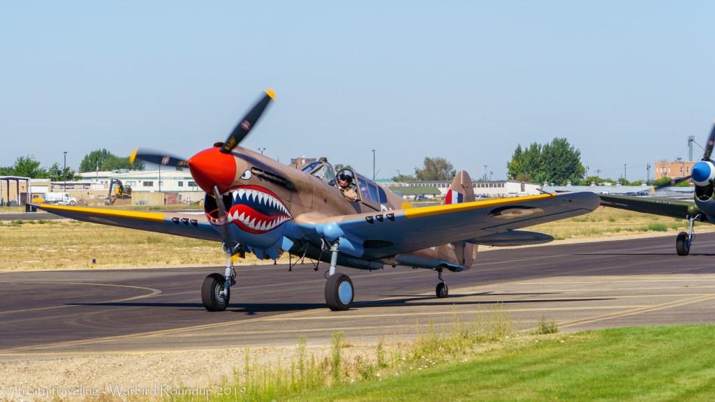 P-40 Kittyhawk warbird roundup 2019 warhawk air museum