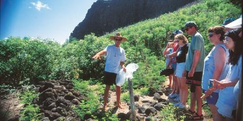 4 Fascinating Flora & Fauna Species on Kauai , Kekaha-Waimea, Hawaii