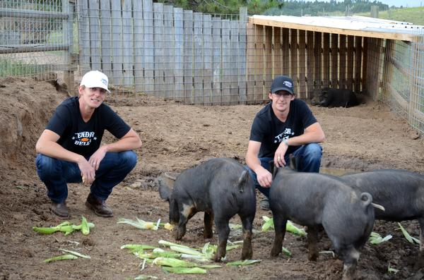 Brother Shannon, left, and Erik Duffy, with the Berkshire hogs that will become Tender Belly Bacon. (Photo courtesy of Tender Belly Bacon)
