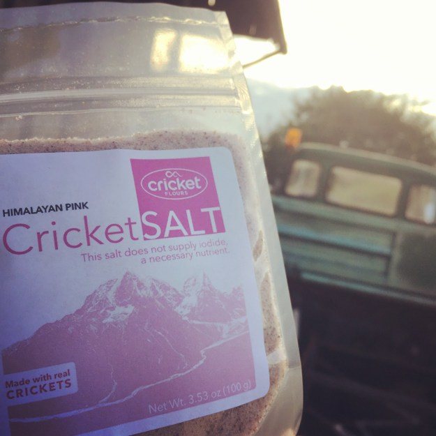 Cricket Salt available on Kickstarter starting October 23, 2017 for World Edible Insect Day (PRNewsfoto/Cricket Flours LLC)