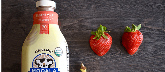 Dairy Free Spotlight: Mooala Introduces Strawberry Bananamilk