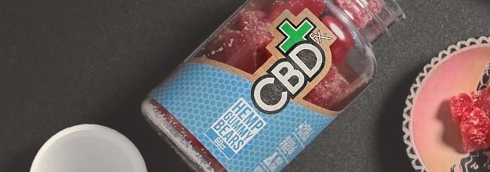 Vegan CBD Gummies by CBDfx