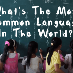 What's The Most Common Language In The World? [VIDEO]