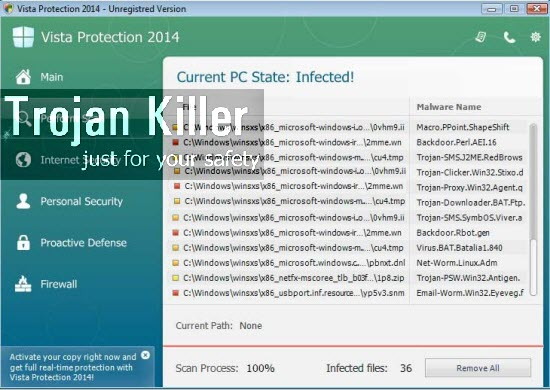 Vista Protection 2014
