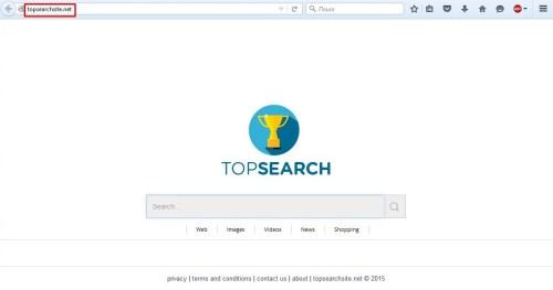 topsearchsite.net