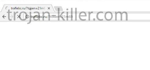 traflebc.ru virus