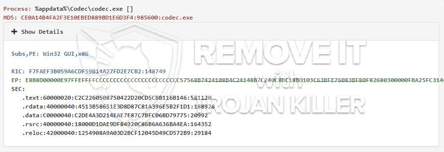remove codec.exe virus