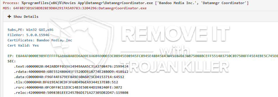 remove DatamngrCoordinator.exe virus