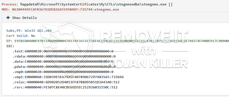remove Stnegnms.exe virus