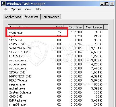 remove Wsus.exe virus