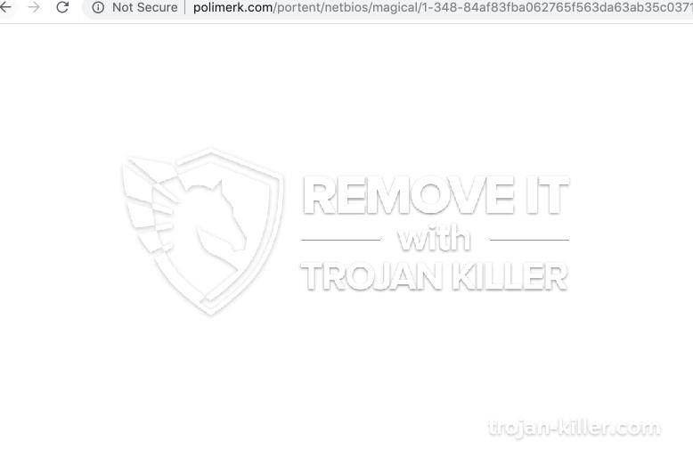 remove Polimerk.com virus