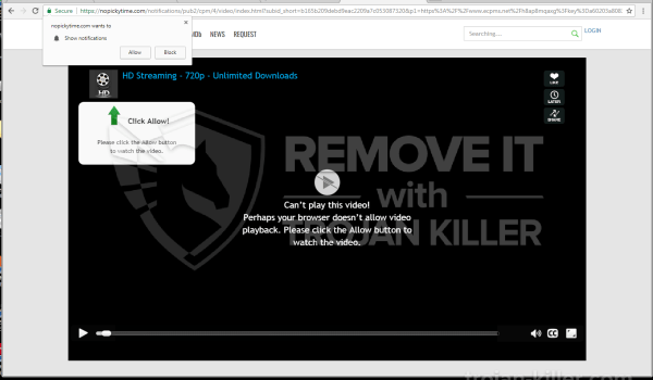 Nopickytime.com virus