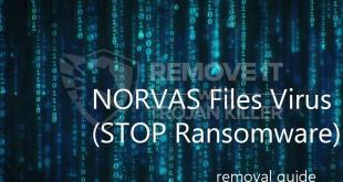 NORVAS ransomware decryptor and removal