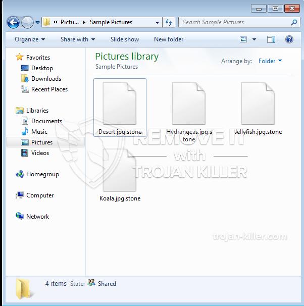 .STONE Ransomware Virus