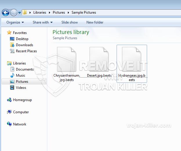 .BEETS ransomware virus
