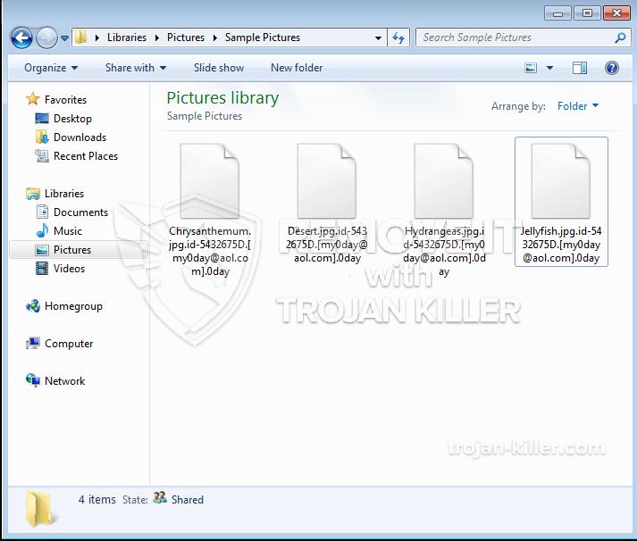 .0Virus DÍA ransomware