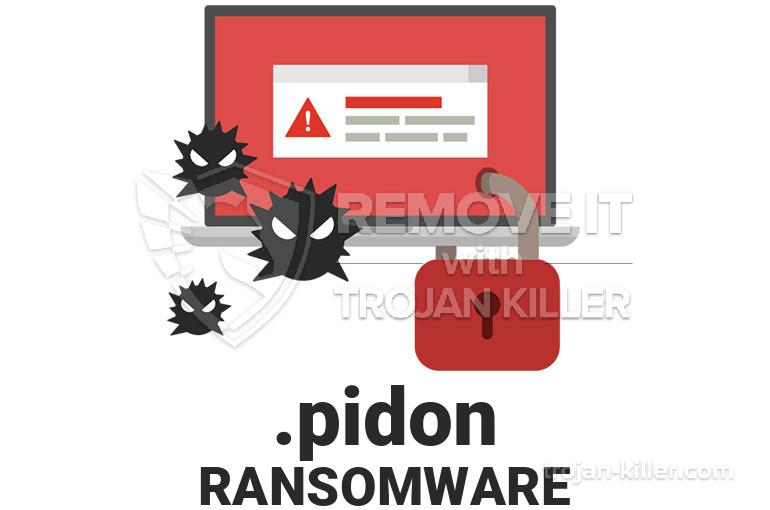 .PIDON virus