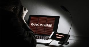Sodinokibi ransomware spreads through fake forums on WordPress sites