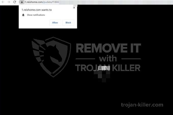Reixhome.com virus