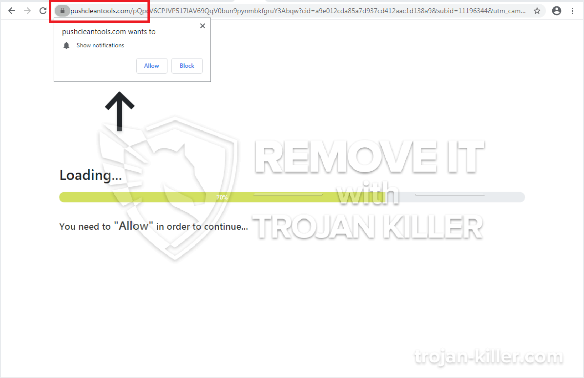 Virus Pushcleantools.com
