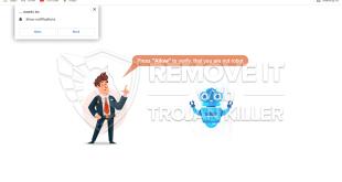 How to remove Tik-ttok.net pup-ups