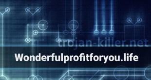 Remove Wonderfulprofitforyou.life Show notifications