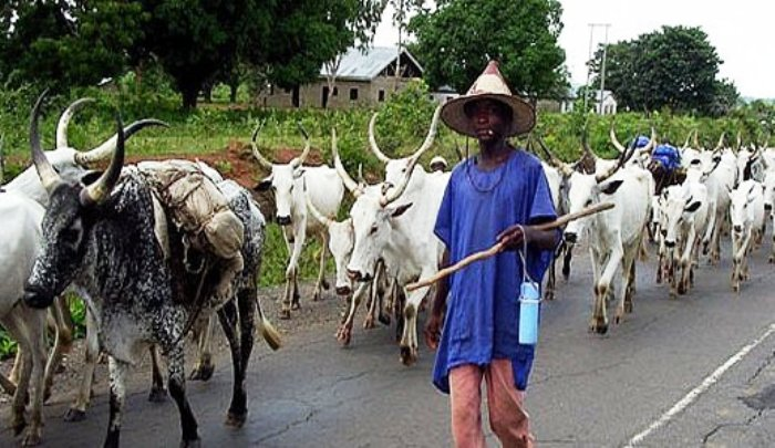 Another State Assembly Dares Buhari, Passes Anti-open Grazing Bill
