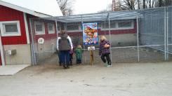 Animal farm at 8am before church