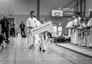 Kyokushin Cup 2017 i Glasgow med gull, glitter og lårhøner