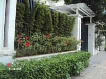 Nếu nhà bạn đang có sẵn một bức tường với gạch thô cứng, bạn cũng có thể dùng dây leo để che bớt đi phần nào mảng tường, vừa đẹp mắt, vừa phảng phất nét nghệ thuật.
