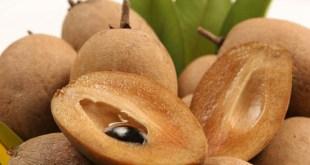 Cách dấm quả Sapoche hiệu quả là ngâm trong nước vôi lắng trong